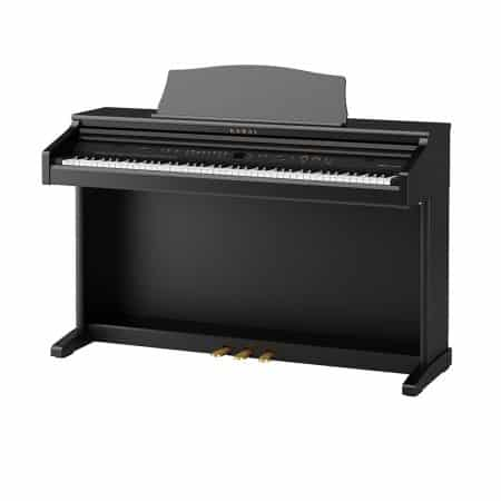 CE220 Digital Piano Dallas