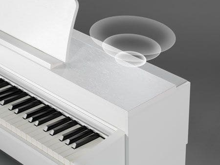 CN Series Digital Piano Speakers