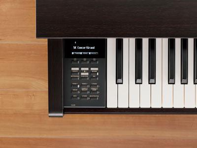 CN39 Song Recorder