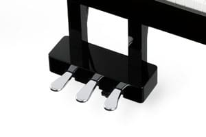 DG30 Grand Pedal System